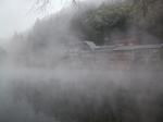 靄にけむる金鱗湖
