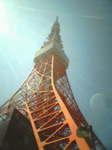 東京タワー No.1